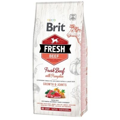 Brit Fresh BEEF with pumpkin PUPPY LARGE 2,5kg